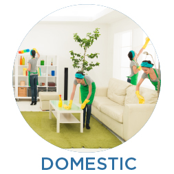 Domestic-Cleaning-GLana